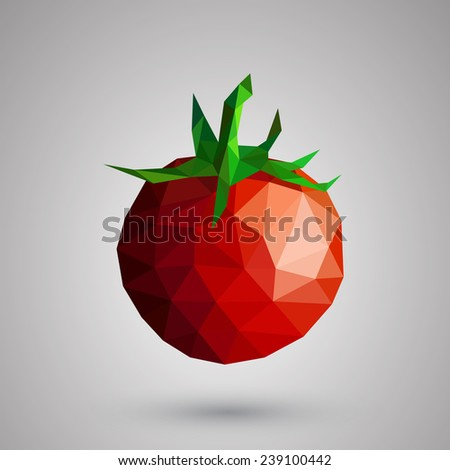 Tomato plants healthy vegetables geometric illustration - stock vector