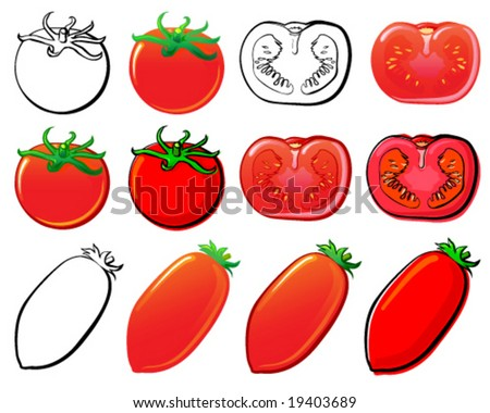 Tomatoes - stock vector