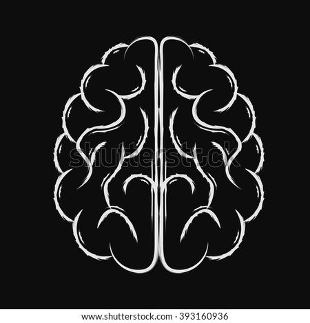 Top view of the vector white human brain. - stock vector