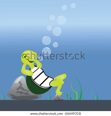tortoise - stock vector