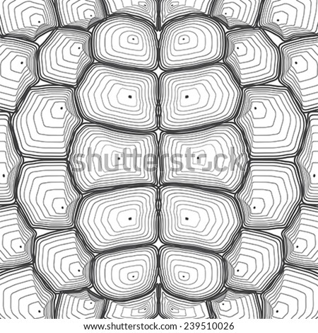 Turtle Shell Vector Stock Vector Tortoise Shell
