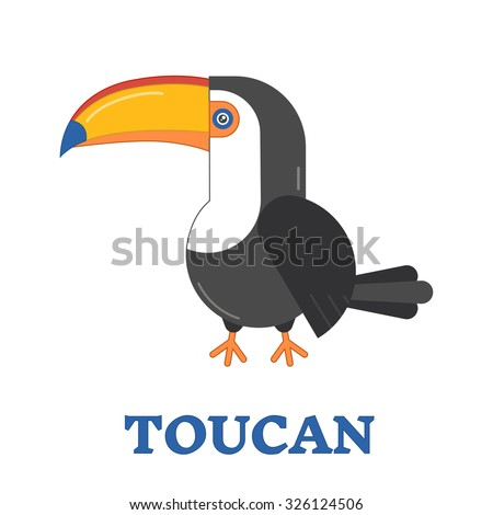 Toucan bird line art icon. Birdwatching popular bird species collection. Flat design toucan colored in bright vivid colors. Childish and cute style. Geometric animal pictogram. - stock vector