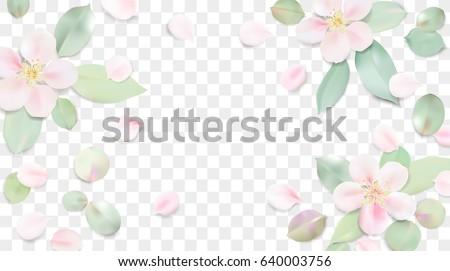 illustration soft floral - photo #11
