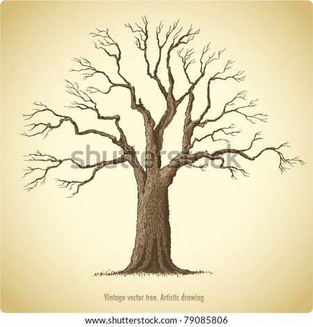 Tree - stock vector