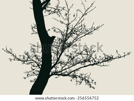 tree and branches silhouette. detailed vector illustration - stock vector