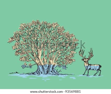 Tree and Deer - stock vector
