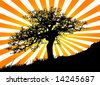 tree and sun - stock vector