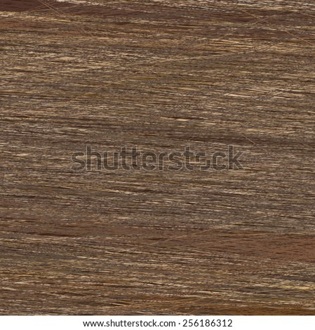 tree bark texture - stock vector