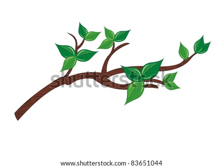 tree branch with green leaves - stock vector