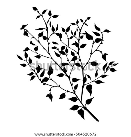 tree branches with leaves and berries, fruit trees twig,isolated hand drawn vector element