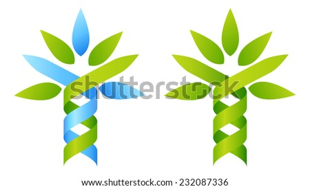 Tree DNA concept of DNA double helix growing into a stylised plant shape. Great for medical, science, research or other nature related use.  - stock vector