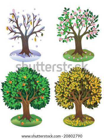 Деревья разных времен года