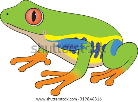 Rainforest Animals Stock Photos, Royalty-Free Images ...