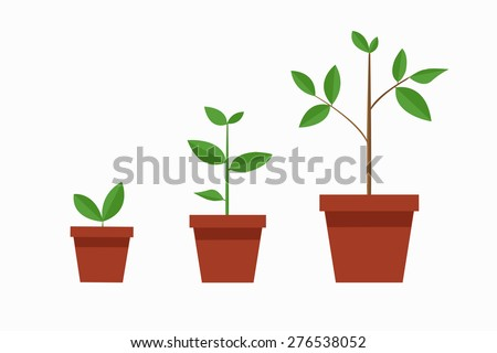 tree / growth / vector / illustration / flat design - stock vector