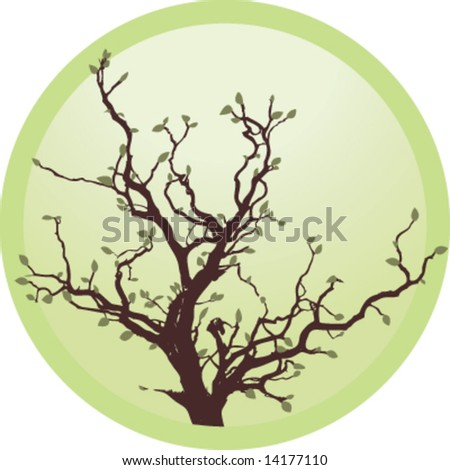 Tree in circle - stock vector