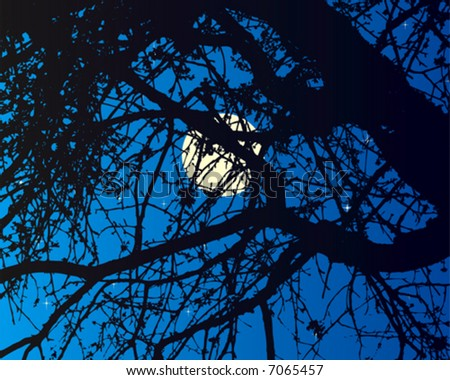 Tree in moonlight - stock vector