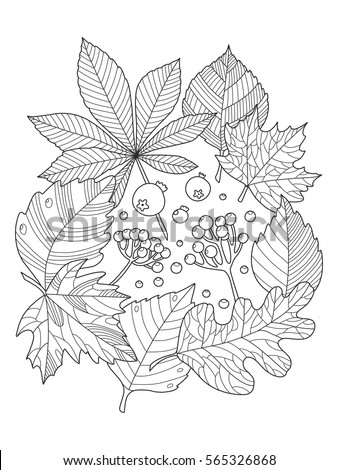 Tree Leaves Foliage Coloring Book Vector Stock Vector (Royalty Free ...