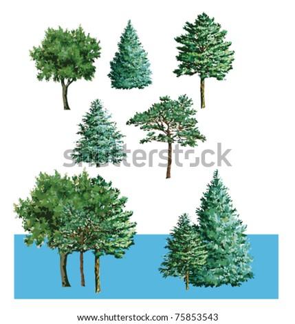Tree shrub - stock vector