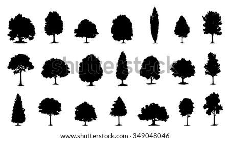 tree silhouettes on the white background - stock vector