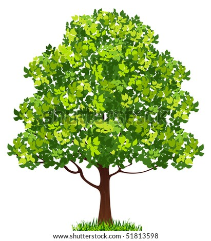 Tree, vector illustration - stock vector