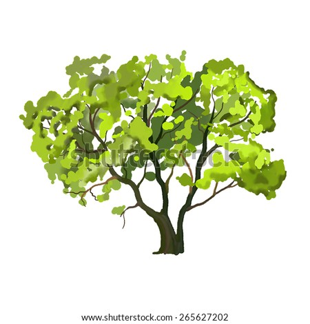 Tree vector illustration  hand drawn  painted watercolor - stock vector