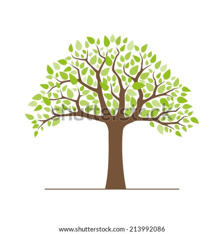 tree with green leaves isolated on white background vector illustration - stock vector