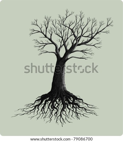 tree with roots vector illustration - stock vector