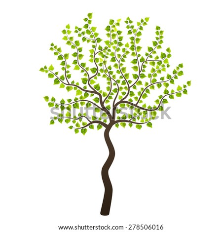 Tree young isolated on white