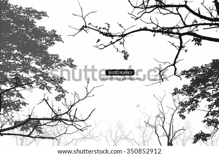Trees and branches silhouette. Detailed vector illustration. Forest banner. - stock vector