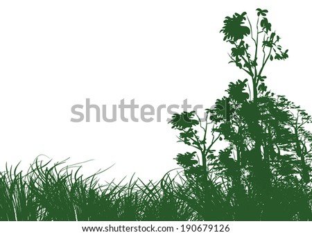 trees and grass on white background with space - stock vector