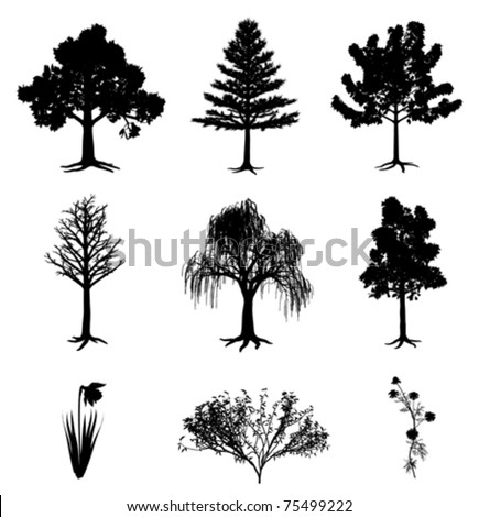 Trees narcissus chamomile and bush (vector) - stock vector