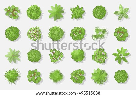 Trees top view different plants trees stock vector for Comedor vector