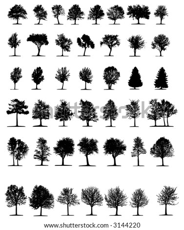 Trees 2 (vector) - stock vector