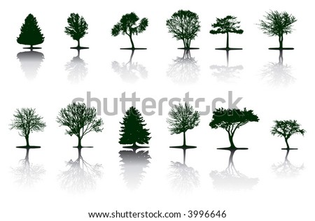 Trees (vector) - stock vector