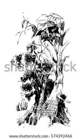 Meadow Plants Silhouettes Stock Vector 256703842 ...
