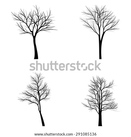 Trees with dead branch