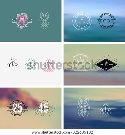 Trendy Retro Vintage Insignias with a blurred background
