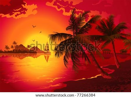 Tropical beach at sunset - stock vector