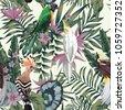 tropical birds parrot hoopoe ...