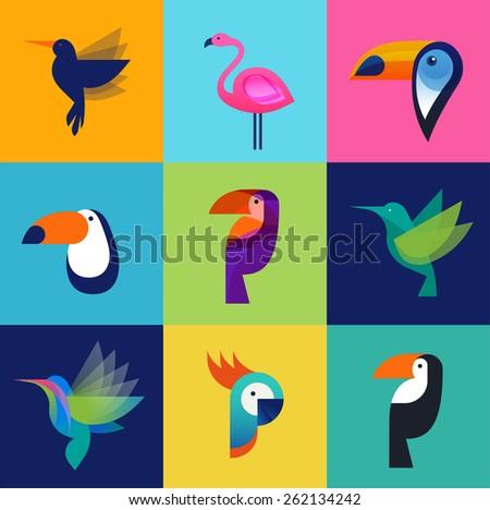 Tropical birds - toucan, flamingo, parrot and hummingbird - stock vector