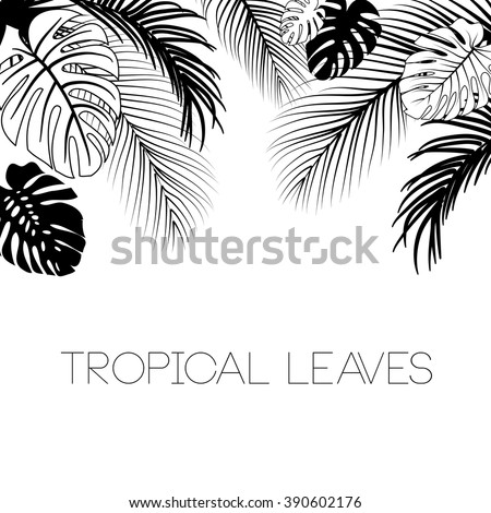 Tropical black and white leaves background - stock vector