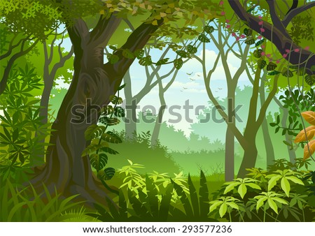 Tropical dense forest - stock vector