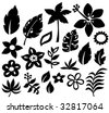Tropical Elements Silhouette Vector Illustration - stock vector