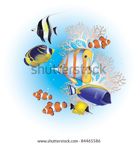 Tropical fish on a coral reef - stock vector