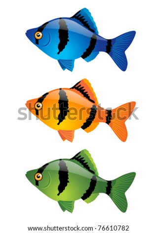 Tropical fish. Vector - stock vector