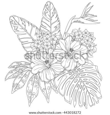 Tropical Flowers Leaves Page Coloring Book Stock Photo (Photo ...