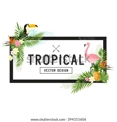 tropical hand drawn elements. - stock vector