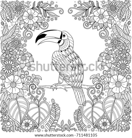 Tropical Hornbill Bird Zentangle