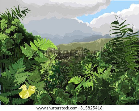 tropical landscape (tropical plants vector illustration)