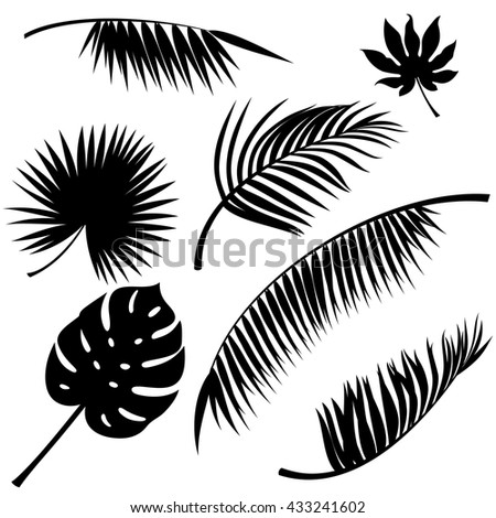 Tropical leaves black vector silhouettes on white - stock vector